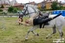 Рок фестивал Кюстендил 2016_7